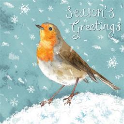 Charity Christmas Card Pack - Snowy Robin