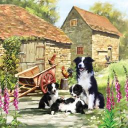 Square Jigsaw - Border Collie Barn