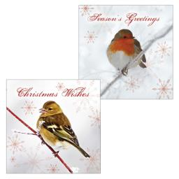 RSPB Luxury Christmas Card Pack - Robin & Chaffinch On A Branch