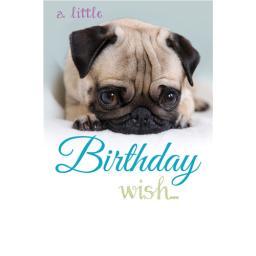 Dinkies Mini Card - Cute Pug Puppy