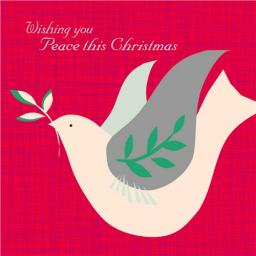 Charity Christmas Card Pack - Bringing Peace