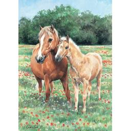 Rectangular Jigsaw - Mother & Foal