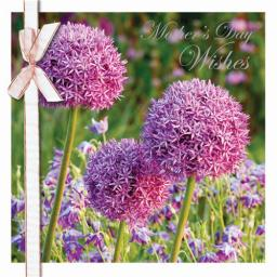 Mother's Day Card - Purple Flowers