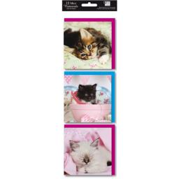 Hanging Notecard Pack - Kittens
