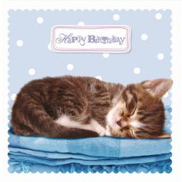 Pet Pawtrait Card - Sleeping Kitty (Birthday Card)