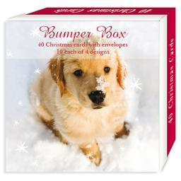 Assorted Christmas Cards - Yuletide Pups