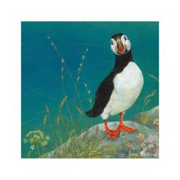 Enchanted Wildlife Card - Puffin