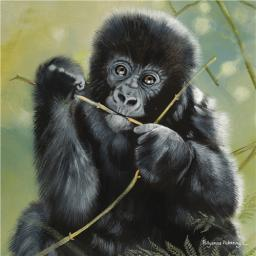 Pollyanna Pickering Collection - Gorilla Infant