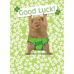 Good Luck Card - Lucky Pants