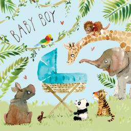 Fizzle Pop Card Collection - New Baby Boy Jungle