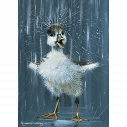 Notecard Pack - Duckling Splash