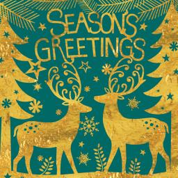 RSPB Small Square Christmas Card Pack - Season's Greetings