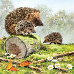 Square Jigsaw - Hedgehog Family
