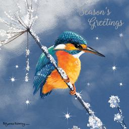 RSPB Small Square Christmas Card Pack - Sparkling Kingfisher