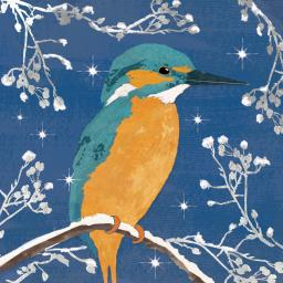 RSPB Small Square Christmas Card Pack - Frosty Kingfisher