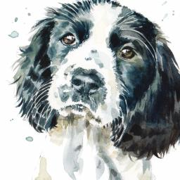 Puppy Dog Eyes Card Collection - Springer Spaniel Smudge