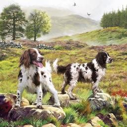Square Jigsaw - Spaniels On The Moor