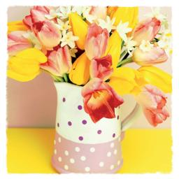 Easter Card Pack - Vase Of Tulips