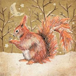 RSPB Small Square Christmas Card Pack - Snowy Squirrel