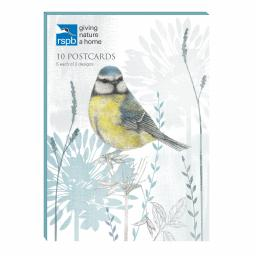 RSPB - Postcard Wallet (Blue Tit)
