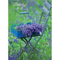 Floral Birthday Card - Bluebells On Chair