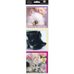Hanging Notecard Pack - Cats