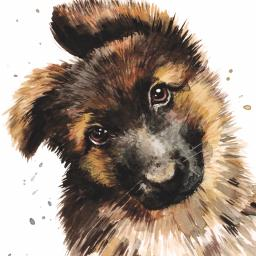 Puppy Dog Eyes Card Collection - German Shepherd Georgie