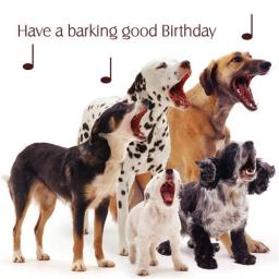 Pet Pawtrait Card - Dog Song (Birthday Card)