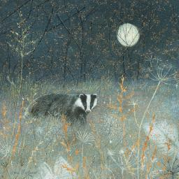 Enchanted Wildlife Card - Badger