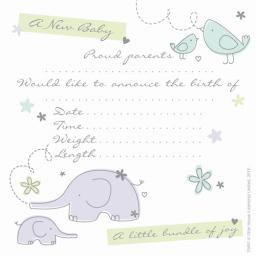 Social Stationery - Generic Birth Announcement (New Arrival)