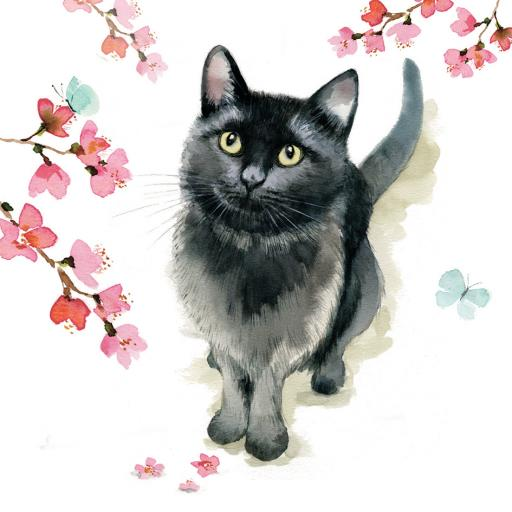 Countryside Collection Card - Black Cat & Blossom