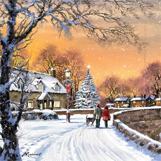 Charity Christmas Card Pack - Christmas Stroll