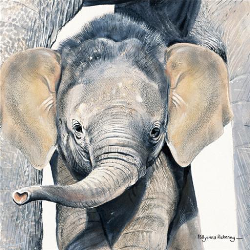 Pollyanna Pickering Collection - Elephant