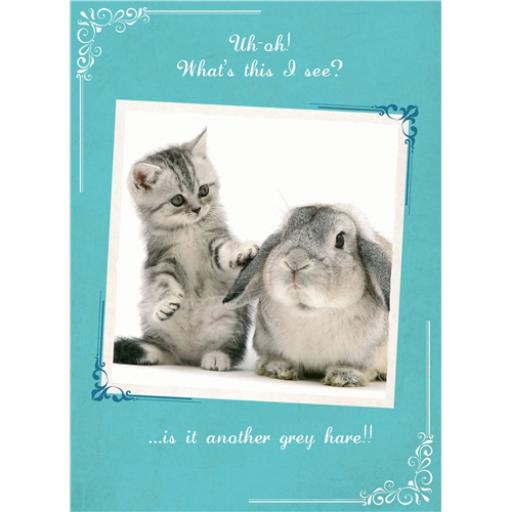What A Hoot Card - Another Grey Hare