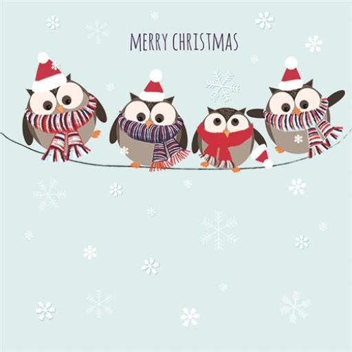 Help For Heroes Christmas Card Pack (Small) - Jolly Owls