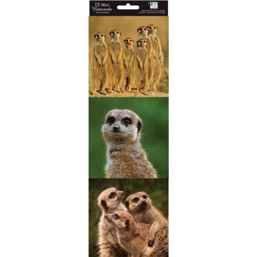 Hanging Notecard Pack - Meerkats