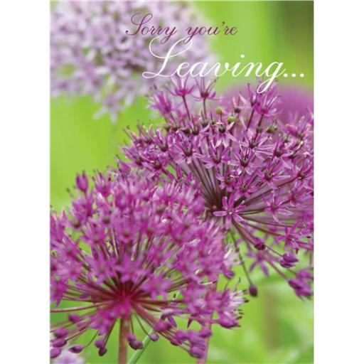 Sorry Card - Alliums (Leaving Card)