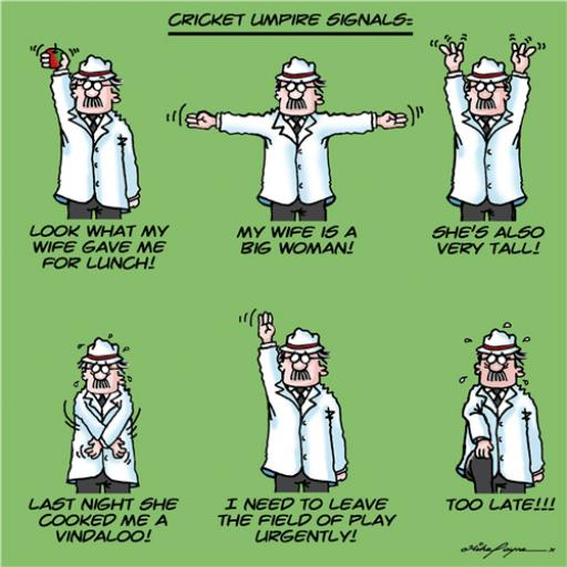 A Bunch Of Stuff Card - Cricket Signals