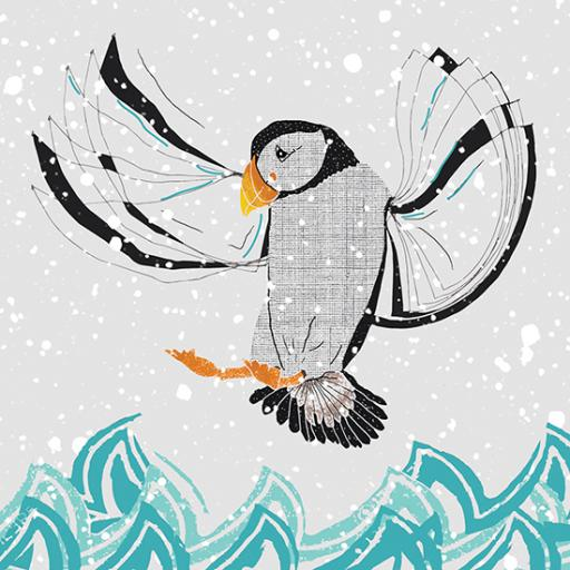 RSPB Small Square Christmas Card Pack - Flight Of The Puffin