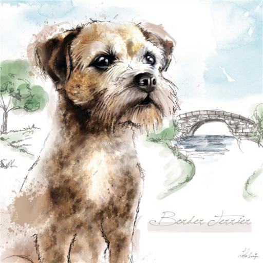 Countryside Collection Card - Illustrated Border Terrier