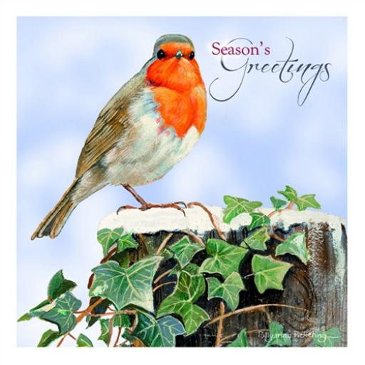Charity Christmas Card Pack - Robin At Christmas