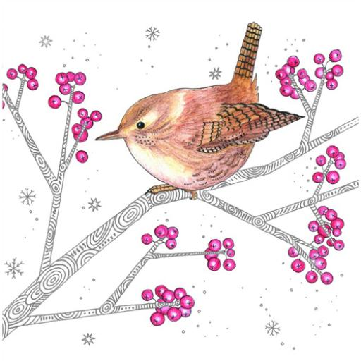 RSPB Small Square Christmas Card Pack - Wren