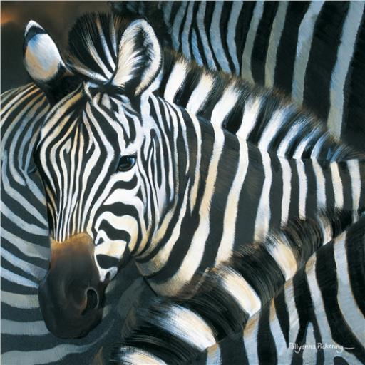 Pollyanna Pickering Collection - Zebra