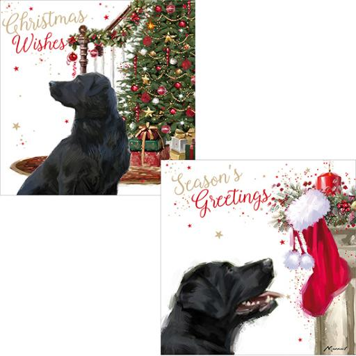Luxury Christmas Card Pack - Waiting For Christmas