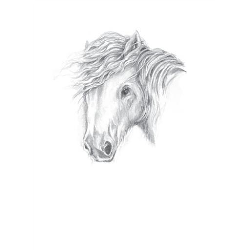 Farm & Country Card - Horse