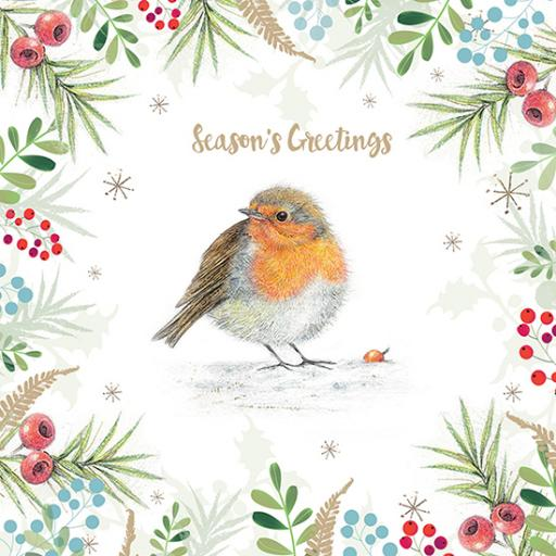 Charity Christmas Card Pack - Curious Robin