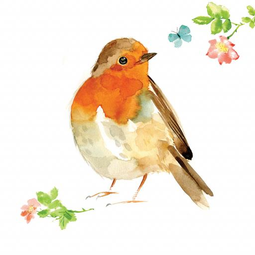 Countryside Collection Card - Watercolour Robin