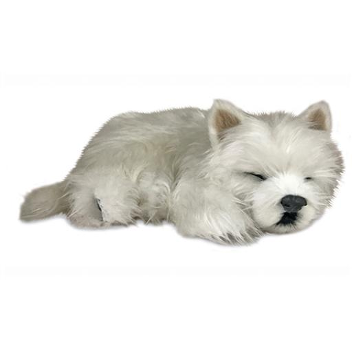 Precious Petzzz - Westie (2nd Edition)