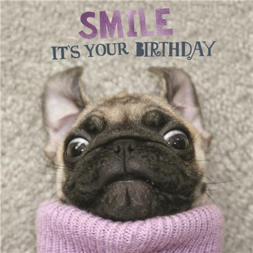 Pet Pawtrait Card - Smile Pup (Birthday Card)