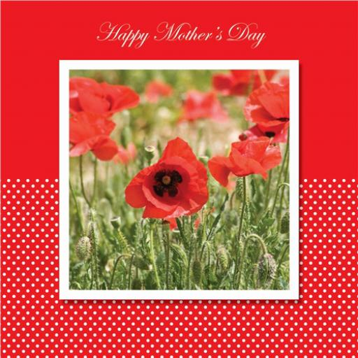 Mother's Day Card - Poppies
